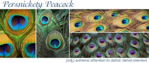 Blog Swap: Persnickety Peacock