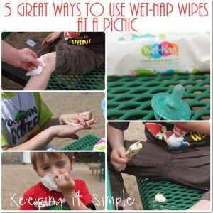 5 Great Way to Use Wet-Nap Wipes at a Picnic #ShowUsYourMess