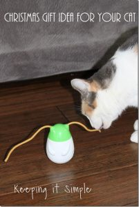 Christmas Gift Idea for a Cat- Friskies Pull 'n Play