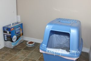 How to Control Cat Litter Odor